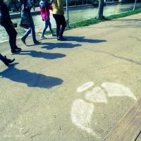 inima 3