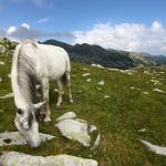 Feerie in muntii retezat_Claudia Tanasescu