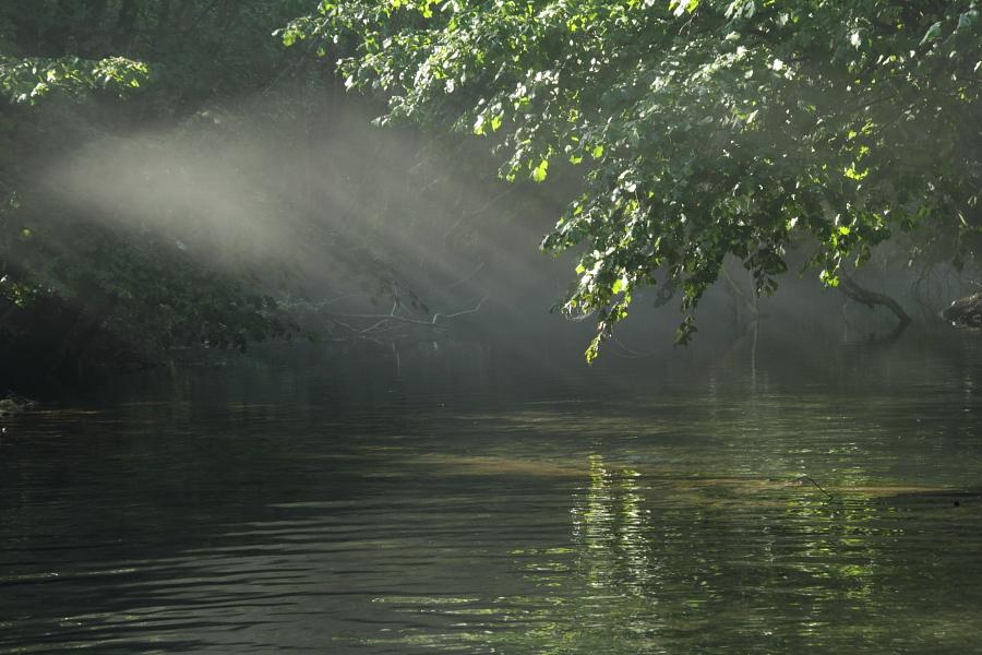 Lumina de dimineata in Cheile Nerei_CT