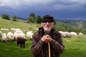 Rural portraits