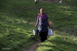 A woman's day at the sheepfold